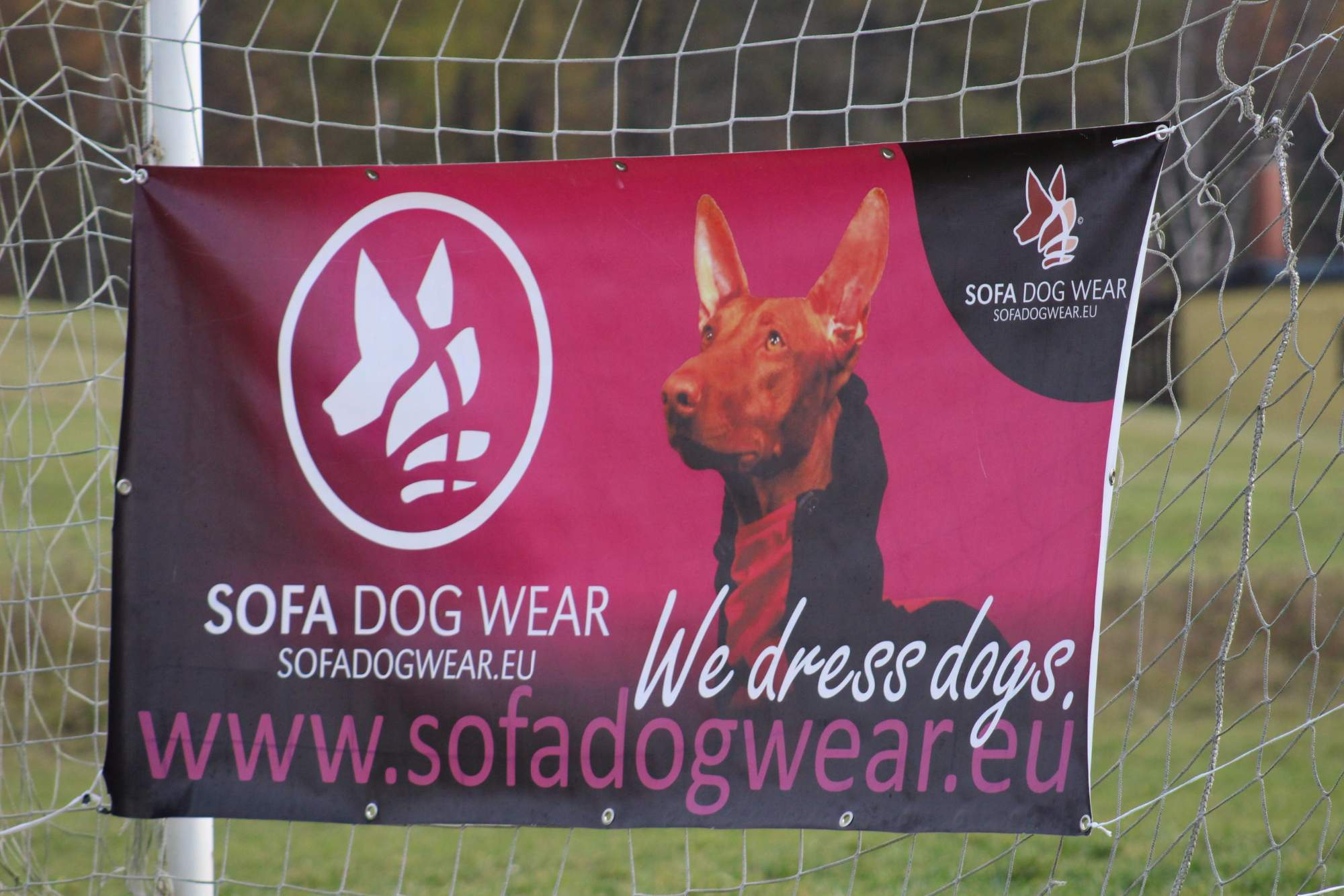 Sofa Dof Wear Cup - Nechrti